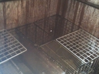 Rabbits kept in shipping container